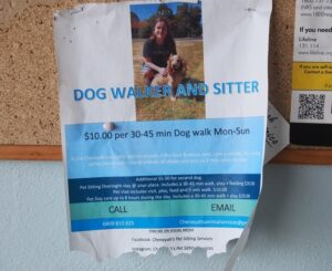 Promotional flyer for Chenayah's Pet Sitting Services
